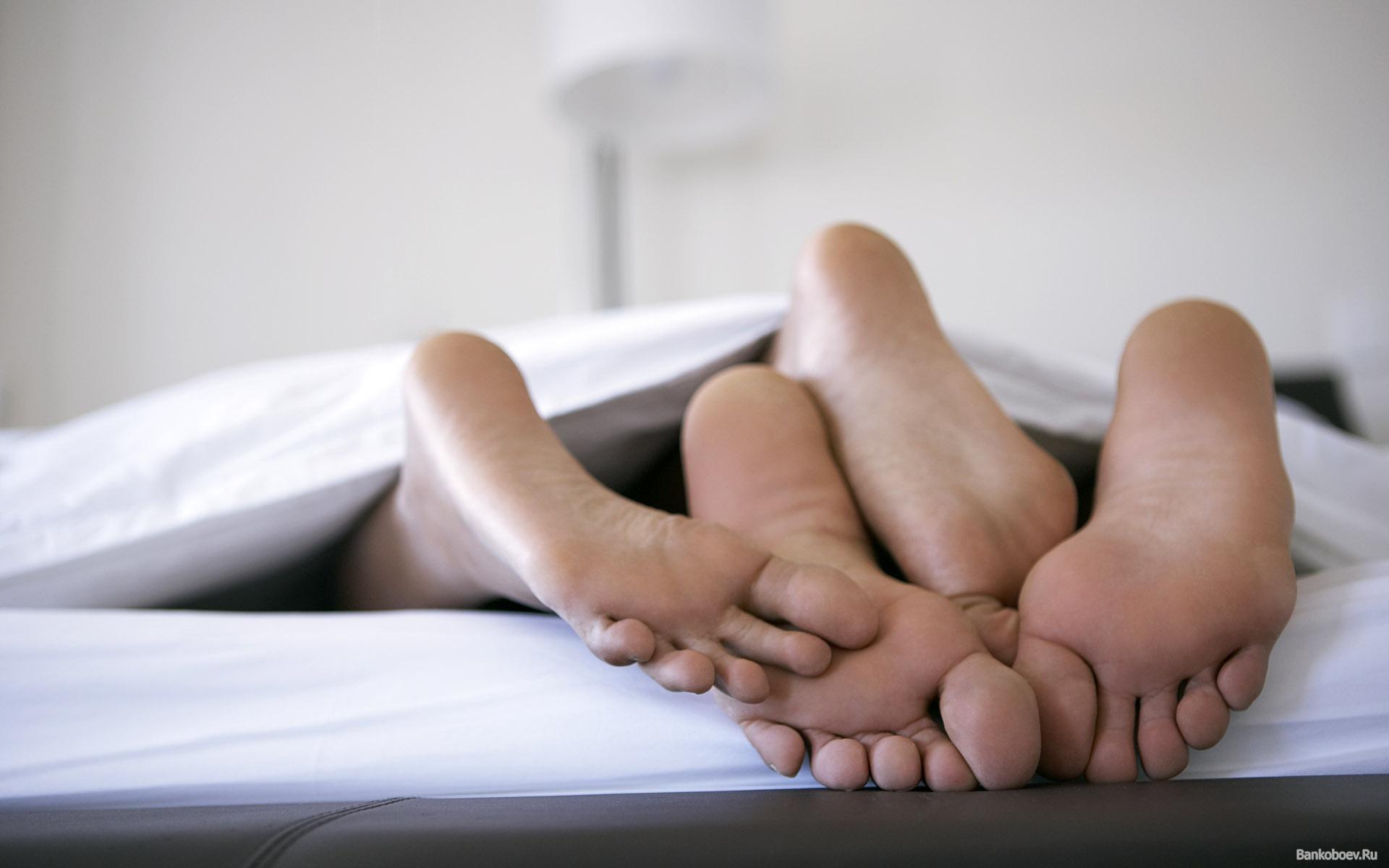 Картинки по запросу пара под одеялом